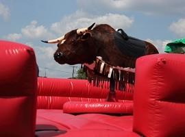 Bull Rental Akron Canton