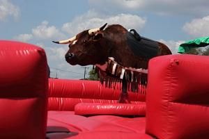bull rental, canton, hudson, aurora, twinsburg